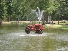 Efurds Orchards in Pittsburg, Tx. East Texas. Peaches & Homemade ice-cream, tractor fountains & an old ford fire truck. I've gotta see this place