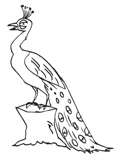Peacock Perched On A Log Coloring Page