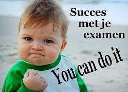 Afbeeldingsresultaat voor kaartje succes wensen voor examen