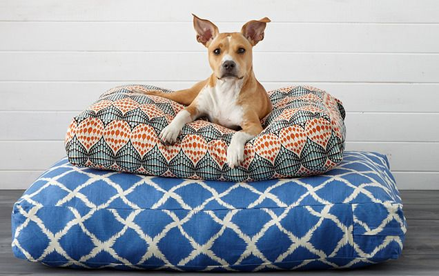 Boho Pet Beds: Jiti, P.L.A.Y. & More - Gilt Home