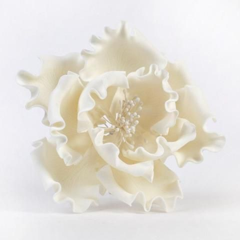 """White Gumpaste Extra Large Peony sugarflower cake toppers perfect for cake decorating rolled fondant wedding cakes and birthday cakes.  Wholesale sugarflowers and wholesale cake supply. Extra Large Peonies - White Extra Large 6"""" Peonies - White. Caljava"""