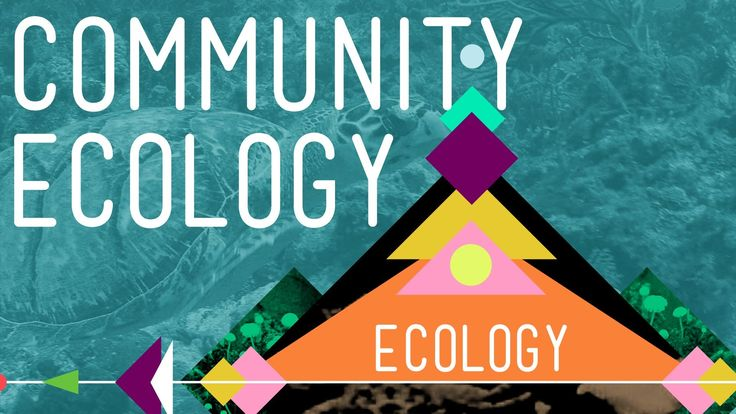 Community Ecology: Feel the Love - Ecology #4