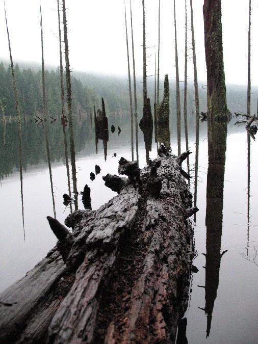 Westwood Lake :)