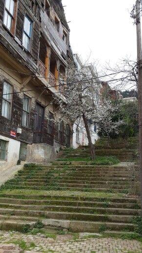 Heybeliada - Istanbul, TURKEY