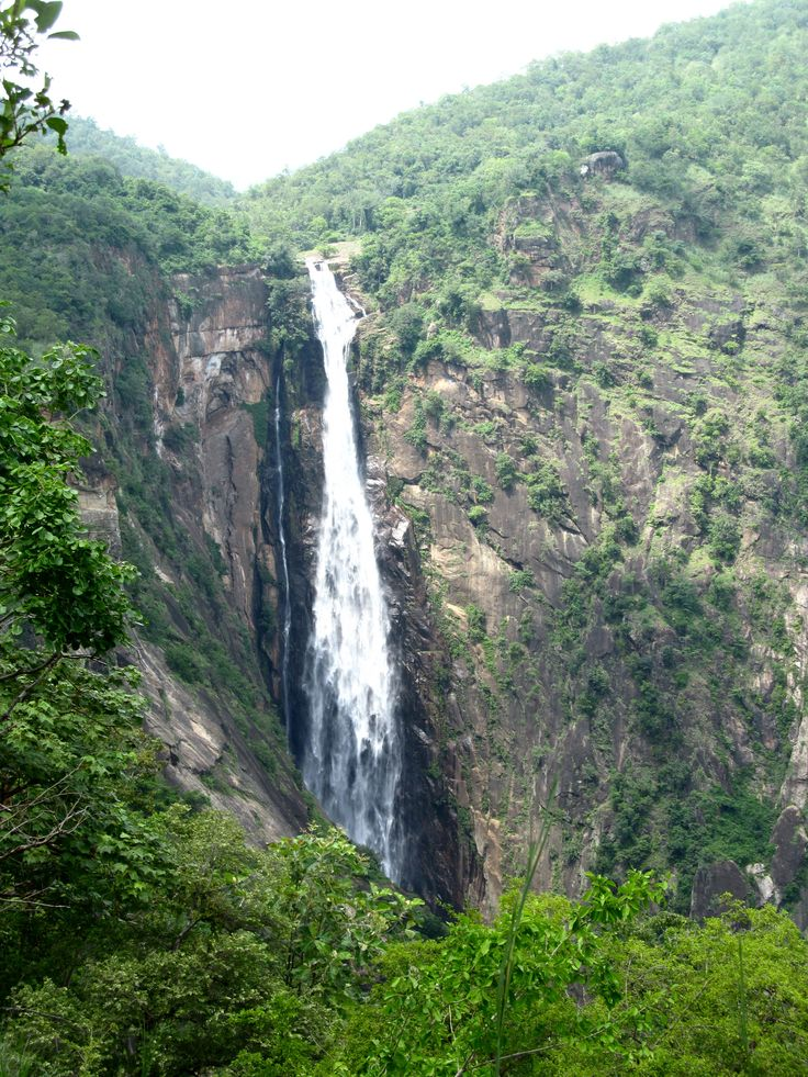 Rattail or Thaliyar Falls, in full monsoon spate...more like a horsetail.