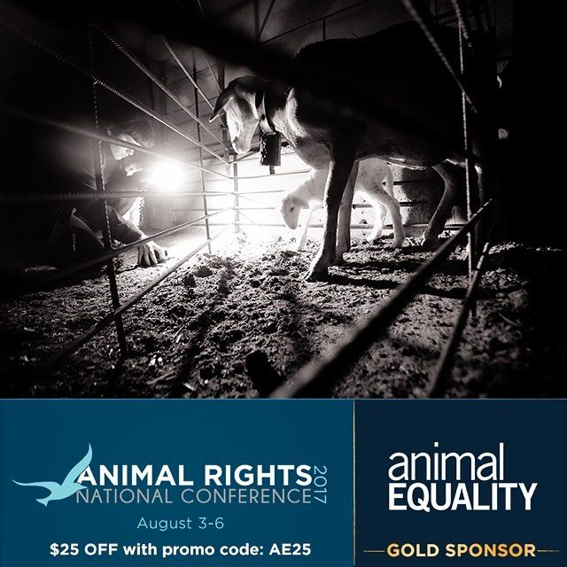 ACT NOW! Online registration closes Friday, July 21 for the Animal Rights 2017 National Conference in #DC.  Use promo code AE25 for $25 off your registration today! . . . #animalequality #animalrights #arconference #choosecompassion #loveanimalseatplants