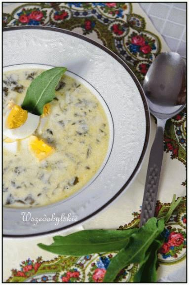 Zdjęcie: Wiosenna zupa szczawiowa.