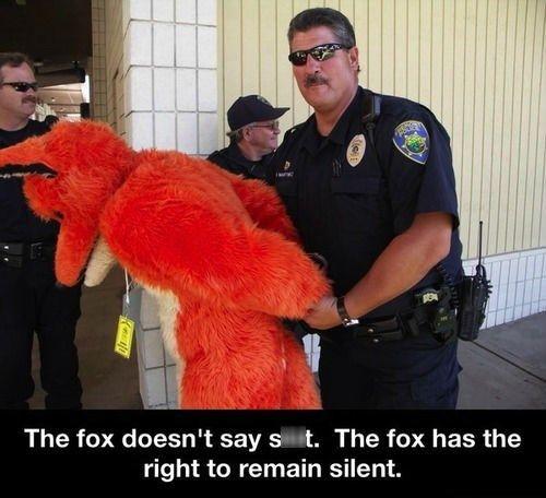 The Fox Needs to Shut Up