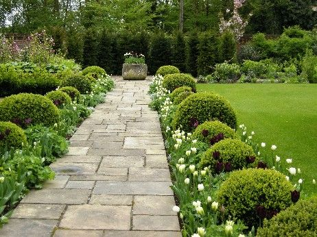boxwoods and tulips These flagstones are just wonderful - wonder if I could recreate this look with different concrete pavers... recycled of course