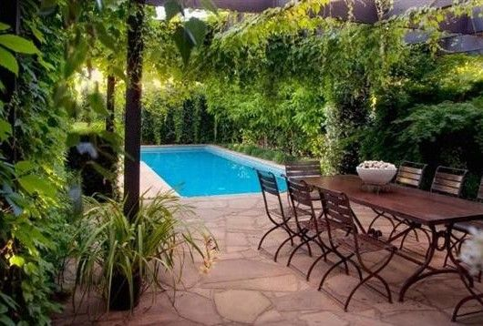 A great small pool design idea for your back yard pool for Small swimming pools for gardens