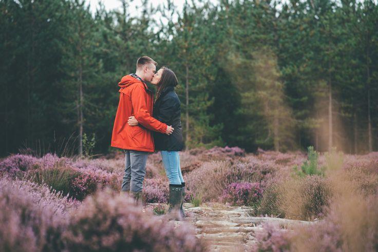 Engagement Shoot at Wareham Forest, Poole.  Matt Fox Photography - Blog - Jennie & Matt