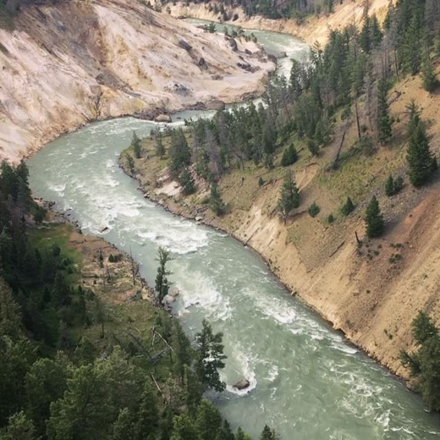 Yellowstone River view from Calcite Springs. . . . . . #yellowstonenationalpark #canyon #yellowstone #river #nationalpark #naturelovers #naturalbeauty #lovenature #takeahike #gooutside Natural Beauty from BEAUT.E