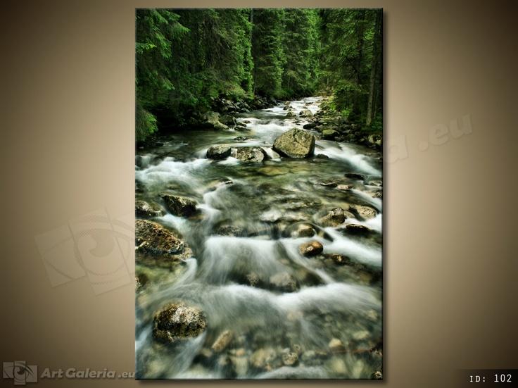 Rzeka w Tatrach