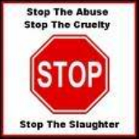 SPEAK UP FOR NEW YORK'S ANIMALS!  Urge Governor Cuomo To Strengthen NY Animal Cruelty Laws! New York State is considering rewriting its animal cruelty laws so that such acts will fall under the penal code, dramatically increasing penalties & the number of cases that can be handled by the state. Dog fighting is rampant in NY! Passing this legislation would be a landmark for animal cruelty and deserves support!  PLZ SIgn & Share whether or not a NY resident!  Thanks!