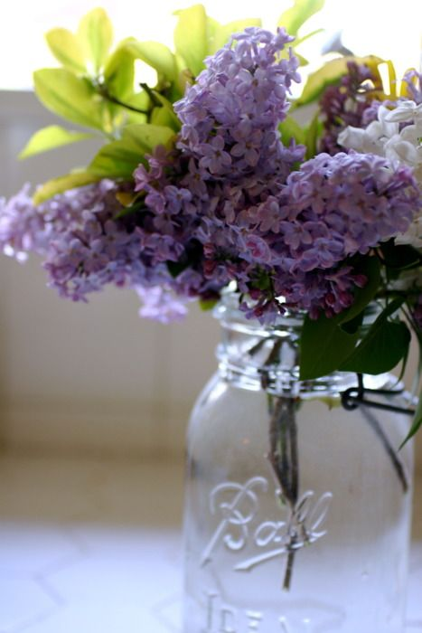 Lilacs and mason jar. Love.