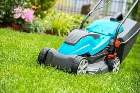 Reasons to Consider Regular Lawn Mowing