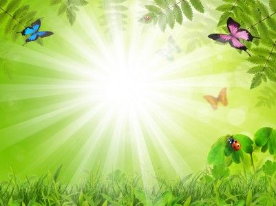 Fabulous background with insects PPT Backgrounds
