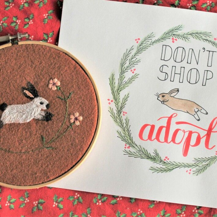 In the upcoming Christmas time - remember, that animals are not good as gifts and that if you really would like to have a new, four-footted friend and family member, you may adopt it! So many of them are waiting for a loving home...