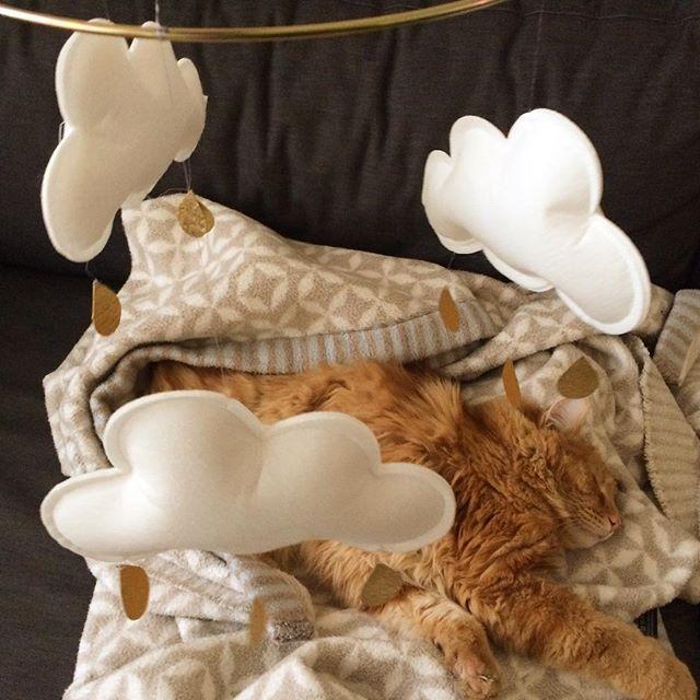 Unser Wolkenmobile funktioniert. Hilft beim Einschlafen. Schnuffi hats getestet....zzzzzz