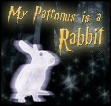 Your patronus takes the form of an animal that possesses characteristics from your own personality. What form would your patronus take? Take...
