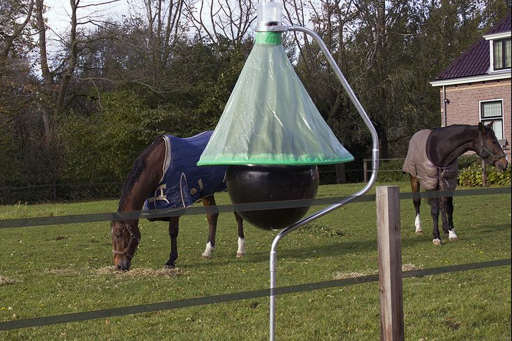 It is time to thing about protection of your horse friends. The new H-trap system effectively controls horse fly numbers, reducing  them to an absolute minimum.  Keep your horses calm and comfortable