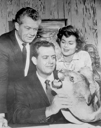 Barbara Hale's husband (and Perry Mason guest star), Bill ...