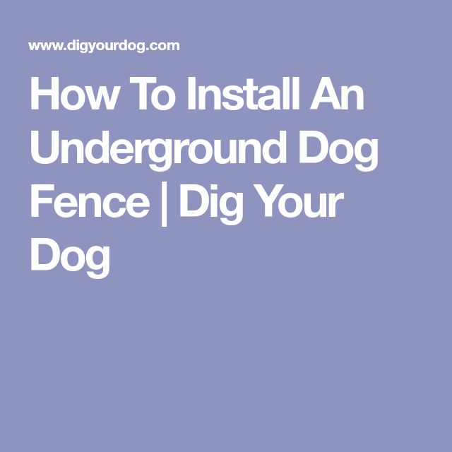 Best 25 Dog Fence Ideas On Pinterest Fence Ideas Wire