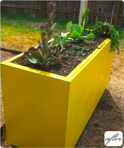 File cabinet repurposed as planter...