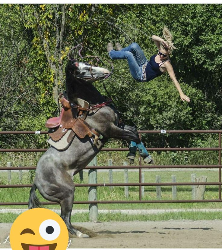 Whoa!   The hardest thing about learning to ride?.... the ground.