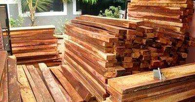Harga Kayu  – Jati, Meranti, Sengon, Mahoni, Kelapa, Kaso, Kamper Kalimantan, Pinus, Ulin, Bengkirai dan Merbau adalah beberapa jenis kayu...