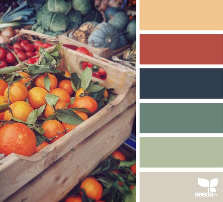 Shop the color-matching paint center at McCoy's Building Supply! www.mccoys.com { color market } image via: @_ewabakrac