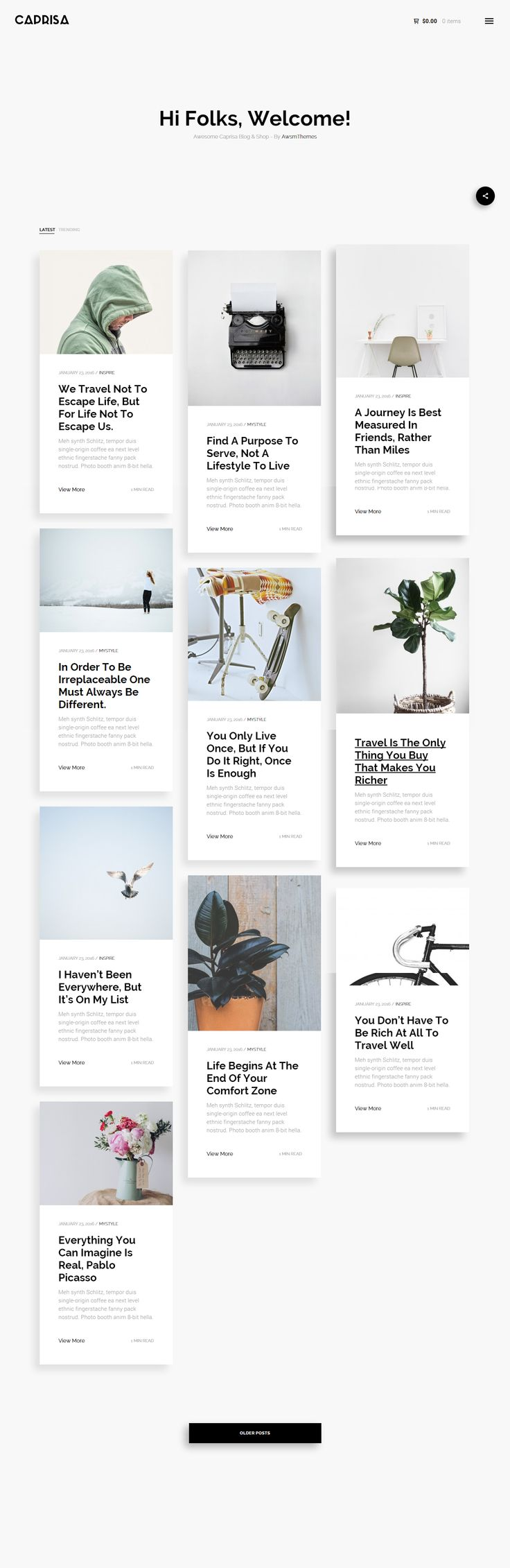 Caprisa - Personal WordPress Blog & Shop WooCommerce Theme  Caprisa. is a beautiful minimalistic WordPress Blog/Magazine and WooCommerce Shop theme, made to put visual oriented content in the first place, whithout any clutter and noise. For creative person that love and enjoy writing and selling. This themes focus on images and readability of your content, and reduce distraction from any unusable element.  Caprisa Blog/Magazine. is ideal for web blogs from which the inspiration came from…
