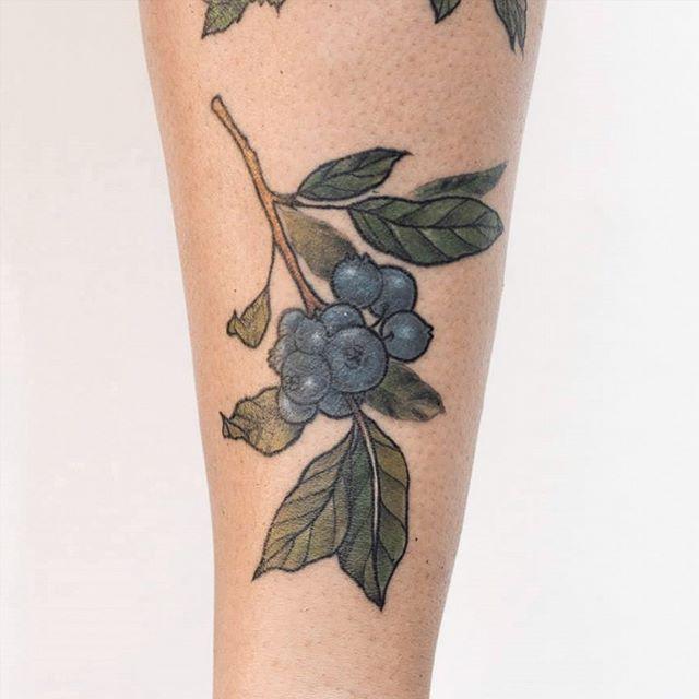CURADO  #arandanos para @la_nayla ❤   Tengo turnos disponibles!   Turnos y consultas por mensaje privado. 🙌   #tattoo #botanicaltattoo #tattooed #tattoos #tattooartist #flores #belpainefilu #bttbuenosaires #inkedmag #inked #tattooart #tattoodesign #art #flowertattoo #tattoolife #equilattera #illustration #TAOT   #nature #botanical #garden #naturetattoo #smalltattoo #floraltattoo #greenpoint #tattooargentina