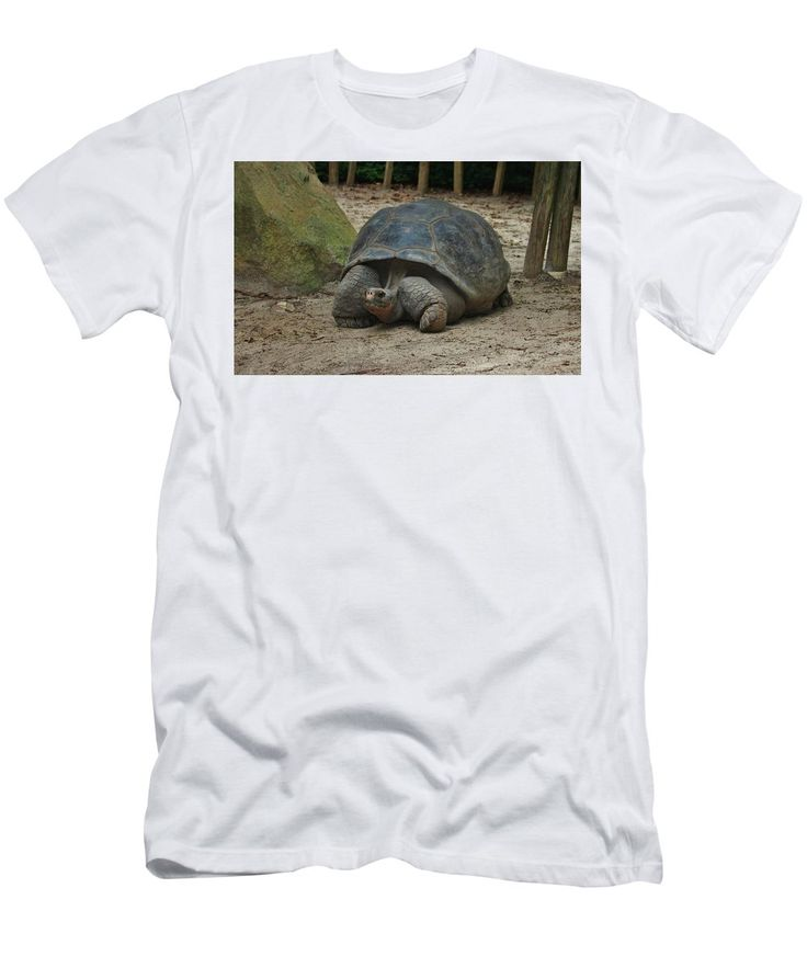 Giant Tortoise Men's T-Shirt (Athletic Fit) featuring the photograph Galapagos Tortoise by Cynthia Guinn