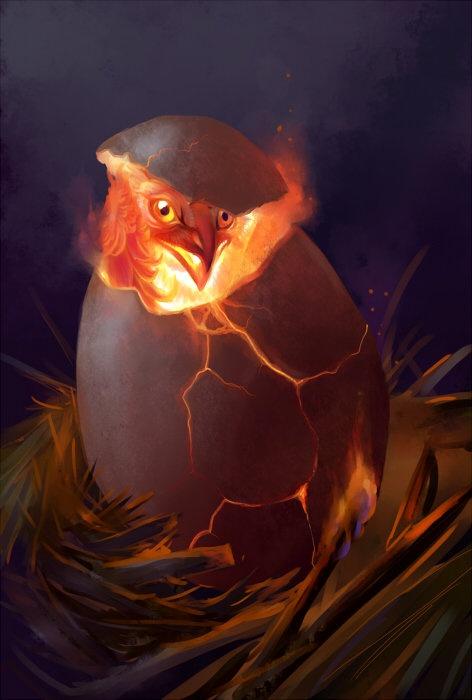 Phoenix Egg hatching by Hannah Böving