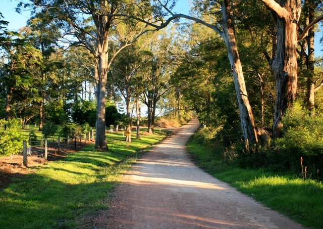 down the winding road.  Explore Toowoomba and the Darling Downs while you are in town for the Toowoomba Carnival of Flowers