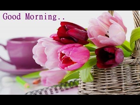 """good morning have a nice day beautiful quotes,wishes,whatsapp video message,greetings,e cards,sms -~-~~-~~~-~~-~- Please watch: """"good morning wishes …"""