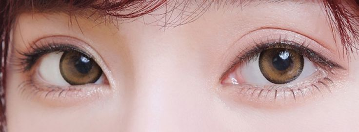 Color Soft Contact Lenses Moistening Eyes (Brown)