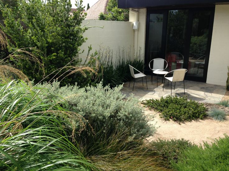 1312 best australian native gardens images on pinterest for Courtyard garden designs australia