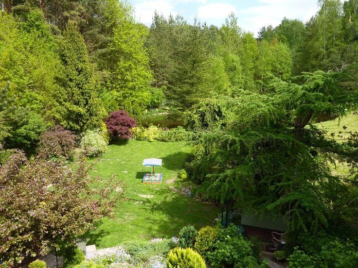 Mój ogród w perspektywie - 25.05.2015