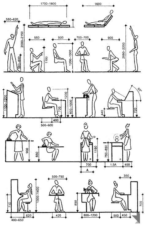 160 best images about ergonomics and measures on pinterest