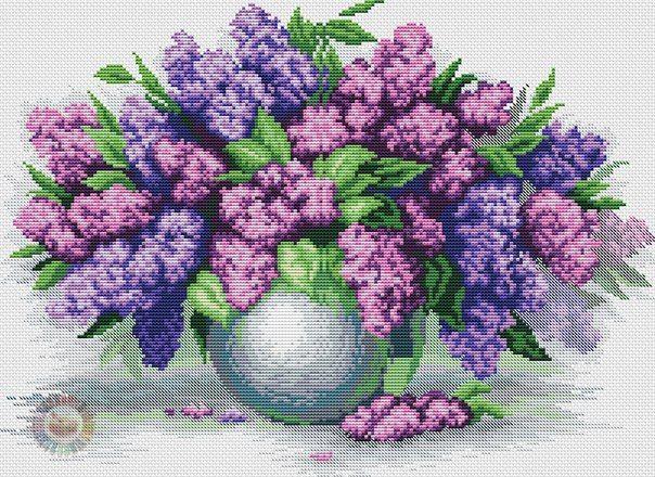 Purple 1/8