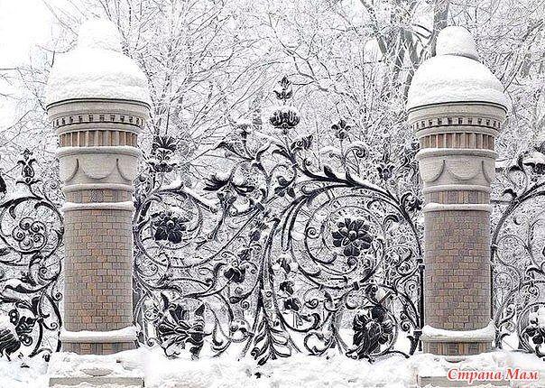 Снежно-белый Петербург. - Страна Мам