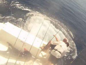 VIDEO - deux pêcheurs éjectés de leur bateau par un marlin