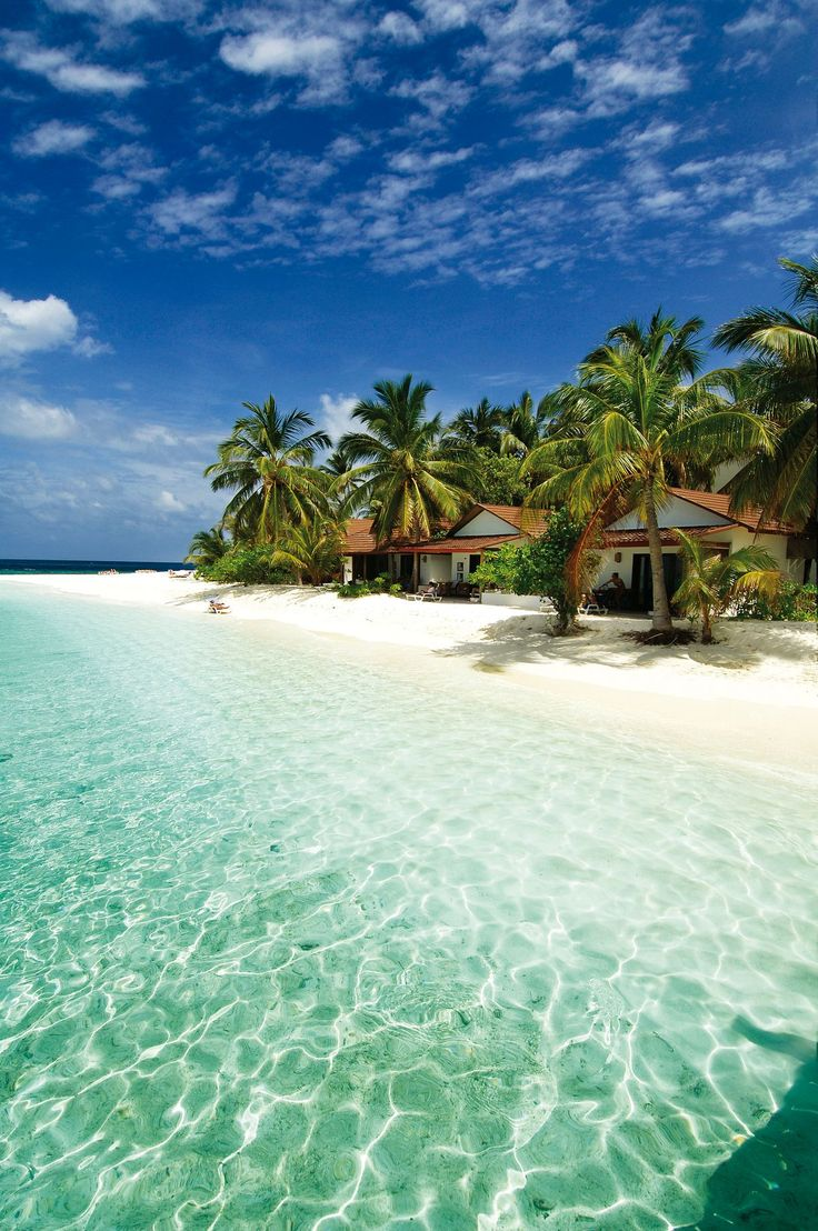 Cozy beach bungalows in the Maldives