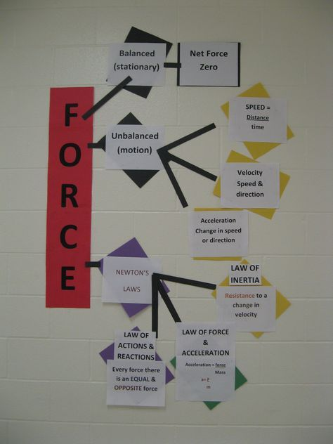 Science TEKS 8.6 force and motion