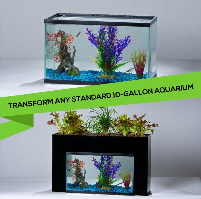 #Aquaponics #Aquariums #Sustainability #Gardening