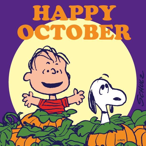 Its The Great Pumpkin Charlie Brown Quotes: 17 Best Images About The Great Pumpkin On Pinterest