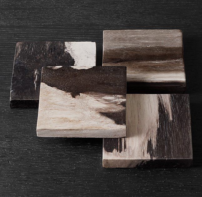 Petrified Wood Coasters (Set of 4)