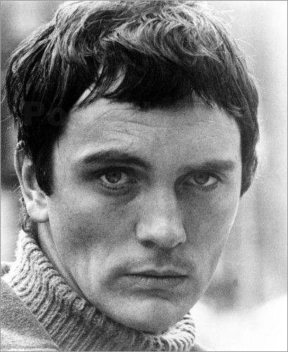 terence stamp | Kunstposter POOR COW, Terence Stamp, 1967
